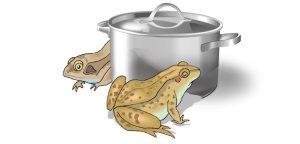 Boiling frog - Spring so lang es noch geht