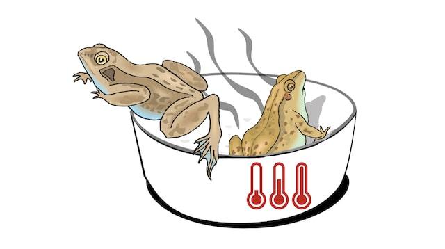 Boiling-frog-Welcher-Frosch-bist-du