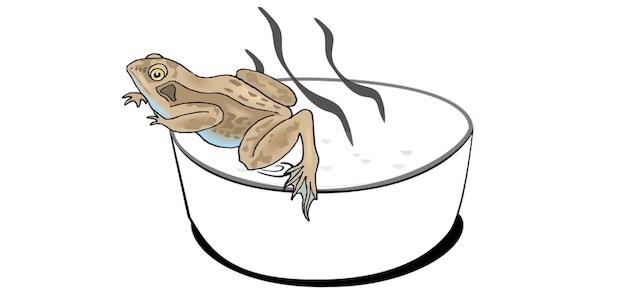 Boiling frog - Wirst du gekocht